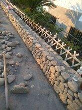 上海鹅卵石自然石图片