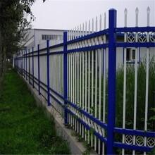 锌钢铁艺栅栏,花园铁艺栅栏图片