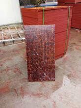 水泥磚機托板報價圖片