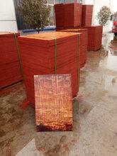 水泥砖机托板厂优游注册平台图片