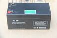 日立應急電池