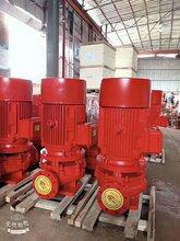 揚程50m米90立方時XBD5.0/25G消防泵穩壓機組噴淋泵圖片