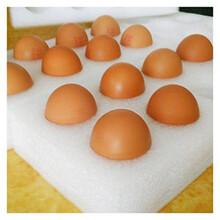 任縣珍珠棉蛋托30枚泡沫包裝盒防震防摔物流快遞圖片