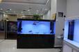 濮陽魚缸廠家定制超白玻璃魚缸批發加盟代理