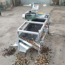 清远茶籽剥壳机价格图片