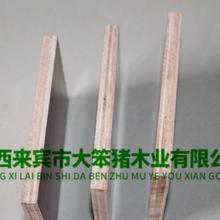 廣西建筑模板廣西建筑模板批發松木模板生產圖片