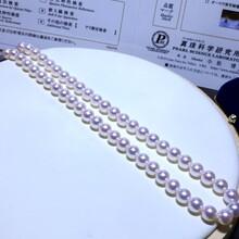 日本真科研证书日本AKOYA8-8.5MM图片