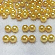 海水日本akoya金珠8-8.5mm正圆微瑕珍珠耳钉图片
