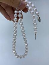 广东深圳福田珍珠招代理日本海水珍珠项链白色8-9mm图片