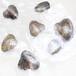 地攤免費送珍珠小蚌真空包裝超市展會夜市淡水珍珠禮品