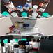 兔抗CTBP1(Phospho-Ser422)多克隆抗體