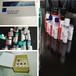 兔抗HIST1H3A(Phospho-Lys9)多克隆抗體