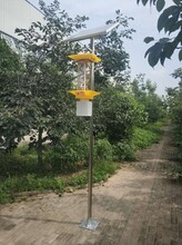 兆迪ZD-A10型太陽能殺蟲燈圖片
