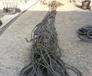 福州插編鋼絲繩索具出售