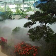景區人造霧設備圖片