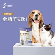 寵物奶粉圖片