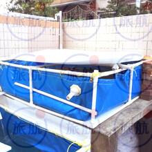 全国物流佛山厂家直销防水帐篷卷帘定制养鱼池印花台皮图片