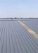 湖北彩鋼瓦翻新除銹特點