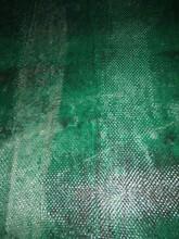 雙河鱗片膠泥圖片