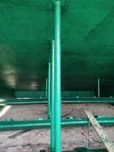雙橋標準玻璃鱗片圖片