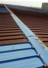 海南彩鋼瓦除銹供應商圖片