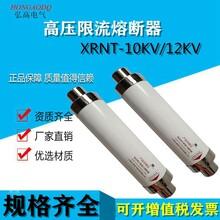 高壓熔斷器(SDLAJ)XRNT-12KV/50A63A80A100A變壓器用保險管圖片