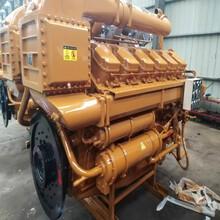 济柴G12V190PZL1大修机,济南大修厂,济柴190柴油机维修配件图片