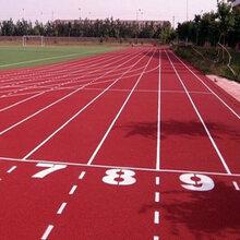 广东深圳新型跑道施工-新国标跑道建设-学校球场施工维护图片