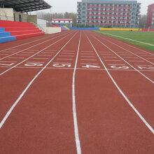 广州塑胶跑道施工-学校操场跑道-各类球场建设工程-施工图片