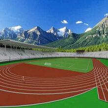 深圳学校跑道建设-运动塑胶跑道施工-各类运动跑道施工工程图片