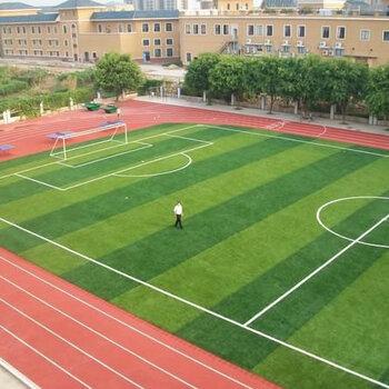 深圳運動草坪施工-足球草鋪設-學校操場草坪鋪設工程