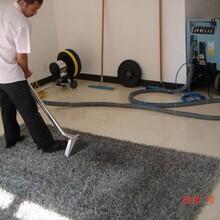蚌埠地毯清洗培訓價格圖片