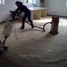 巴中地毯清洗培訓服務圖片