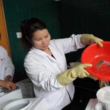 淄博飲水機清洗培訓機構圖片