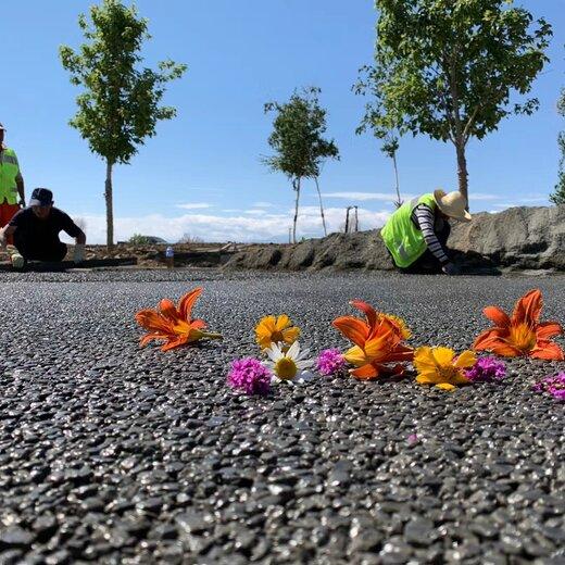 福建泉州市政园林景观透水路面透水混凝土胶粘剂批发