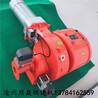 沧州燃烧机厂家批发销售2吨超低氮燃烧机