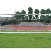海南體育運動器材足球門廠家直銷圖片