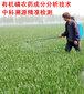 成都有机磷第三百五十农药化学成分分析检测图片
