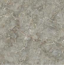 温州卫国金丝玉玛瓷砖批发图片