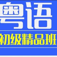 坂田五和雪象粤语班0基础包学会图片
