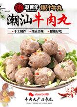 潮汕牛肉丸品牌_潮百年牛肉丸图片