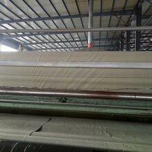 厂家直销复合土工膜,防水土工布,复合土工布300g图片