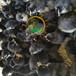 养殖)福建福州小鹅苗厂家(火鸭苗行情——服务至上