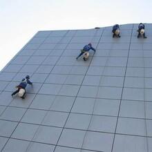 河東區高空外墻清洗公司圖片