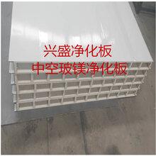 郑州兴盛厂家净化板,硫氧镁净化板,硅岩净化板,岩棉净化板直销