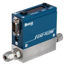 華北區顯示器型微流量高精度質量流量控制器EX-700圖片