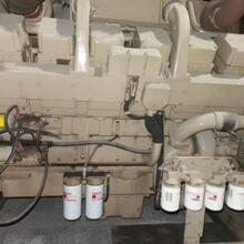 發電機廠家低價轉讓鼎新DCM800二手發電機組康明斯回收圖片