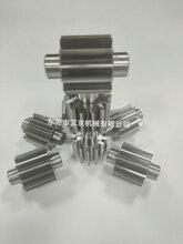 德國埃馬克滾齒機加工高精度齒輪軸靜電噴涂齒輪泵圖片