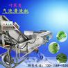 不銹鋼果蔬氣泡清洗機噴淋式中藥材洗菜機渦流震動瀝水加工流水線