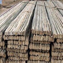 河南省南阳地区出售建筑工地竹笆片图片
